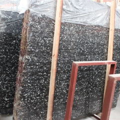 Black Fossil Marble Flooring Wall Tiles and Slabs